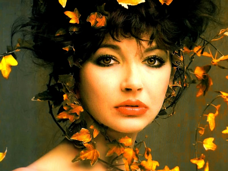 Kate Bush explored for you