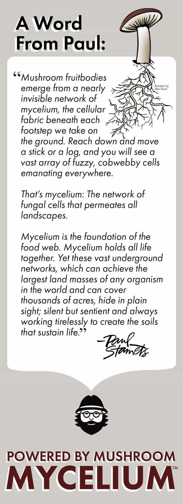 A Word About Mushroom Mycelium
