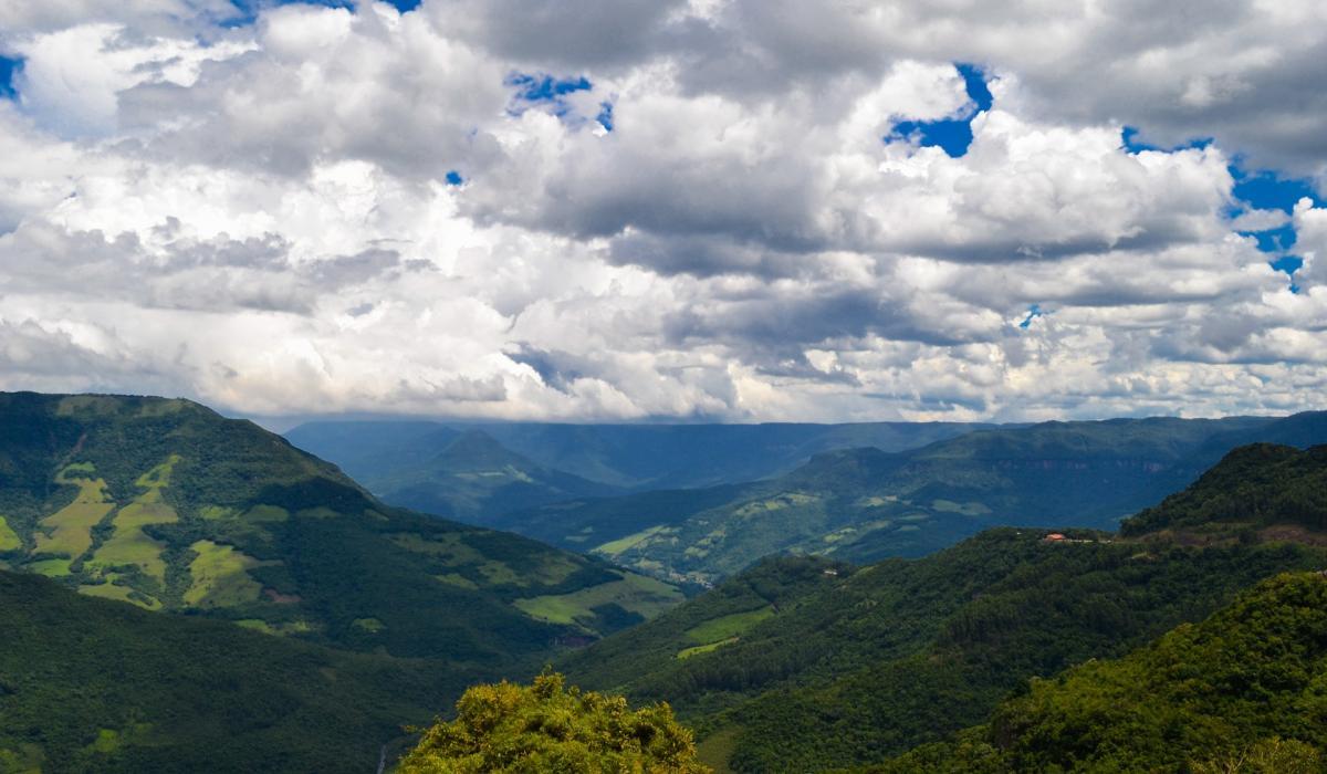 Brazil Atl forest_Pixabay_Ricardo Alexandre Fotografia Ricardinho