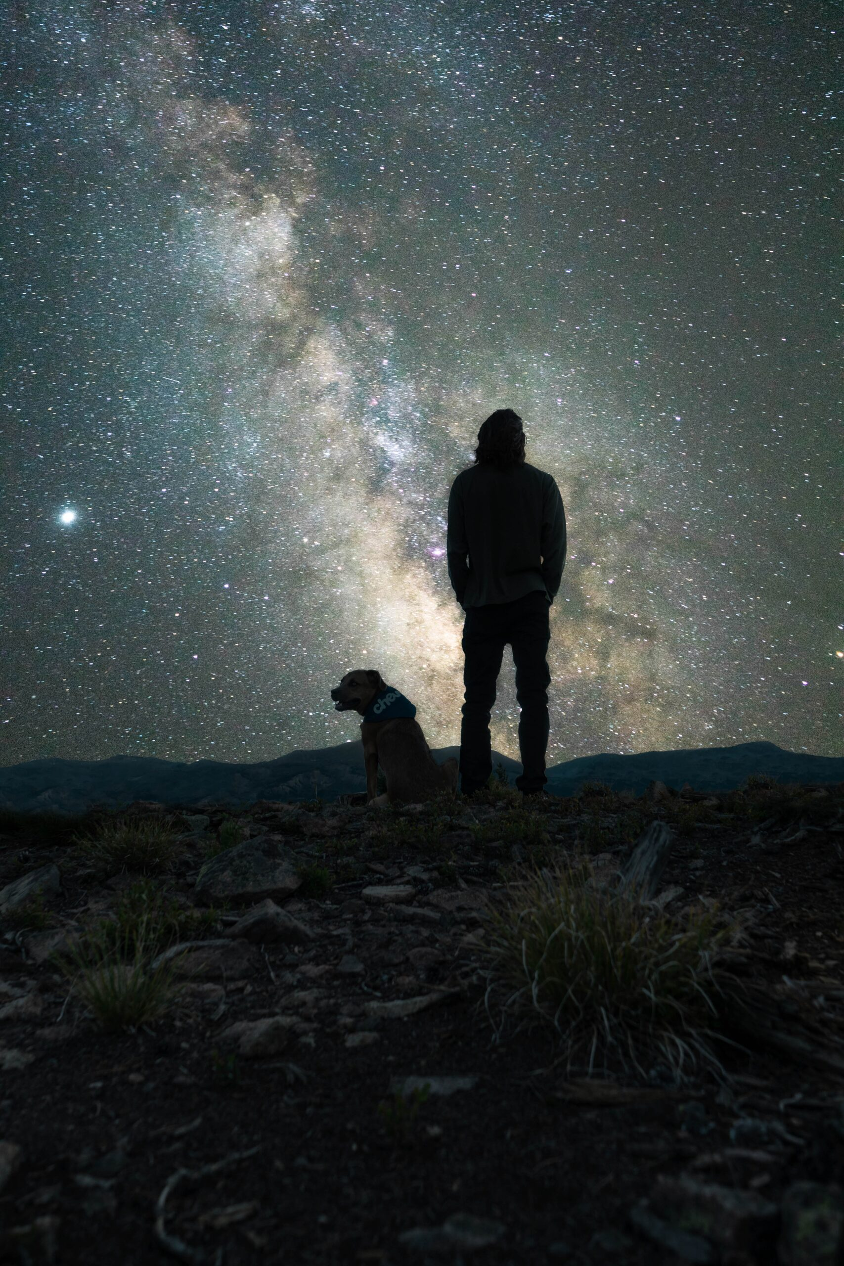 Man and dog with starry sky aureola borealis