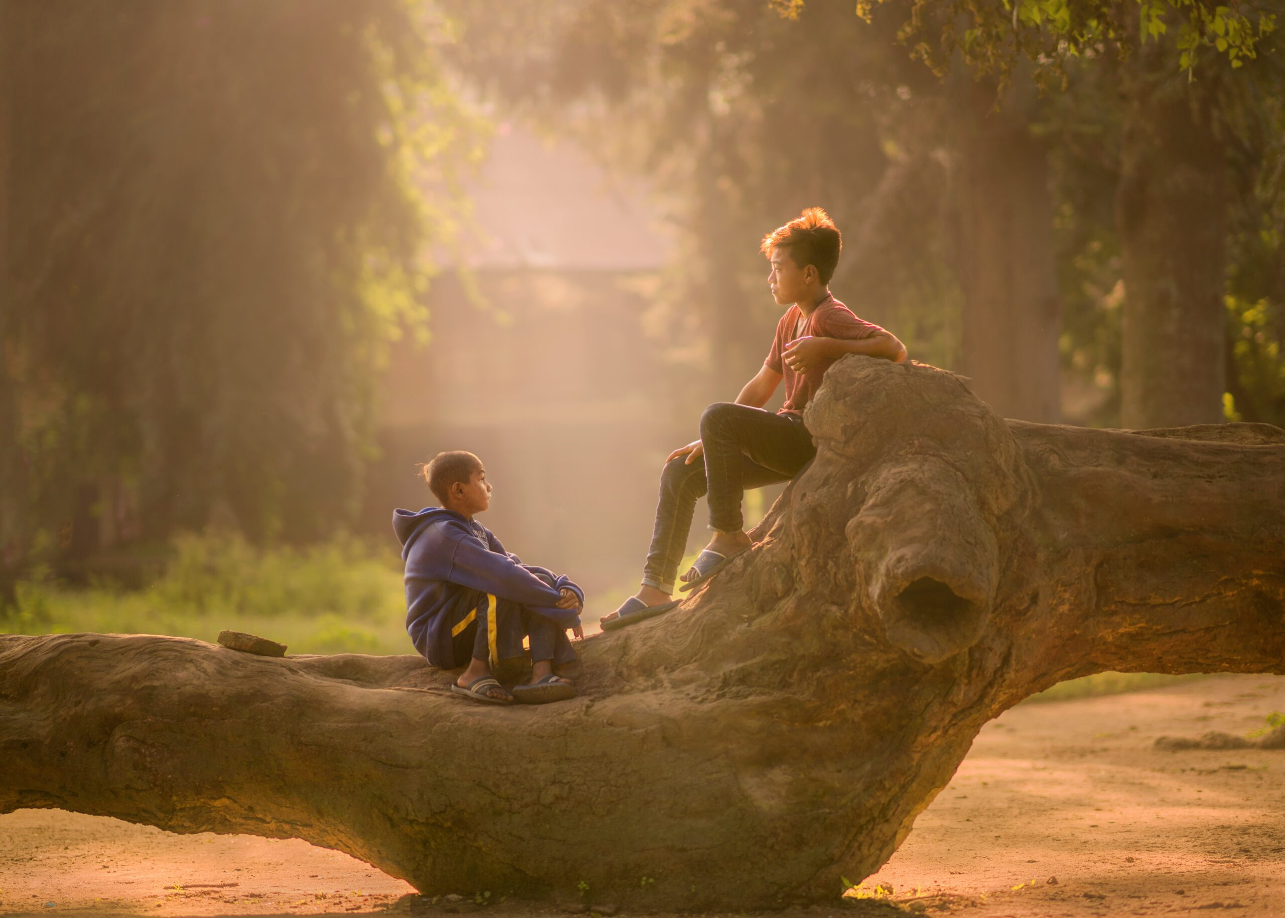 robert-collins-Two boys on deadwood talking sunsplashed in evening light-unsplash