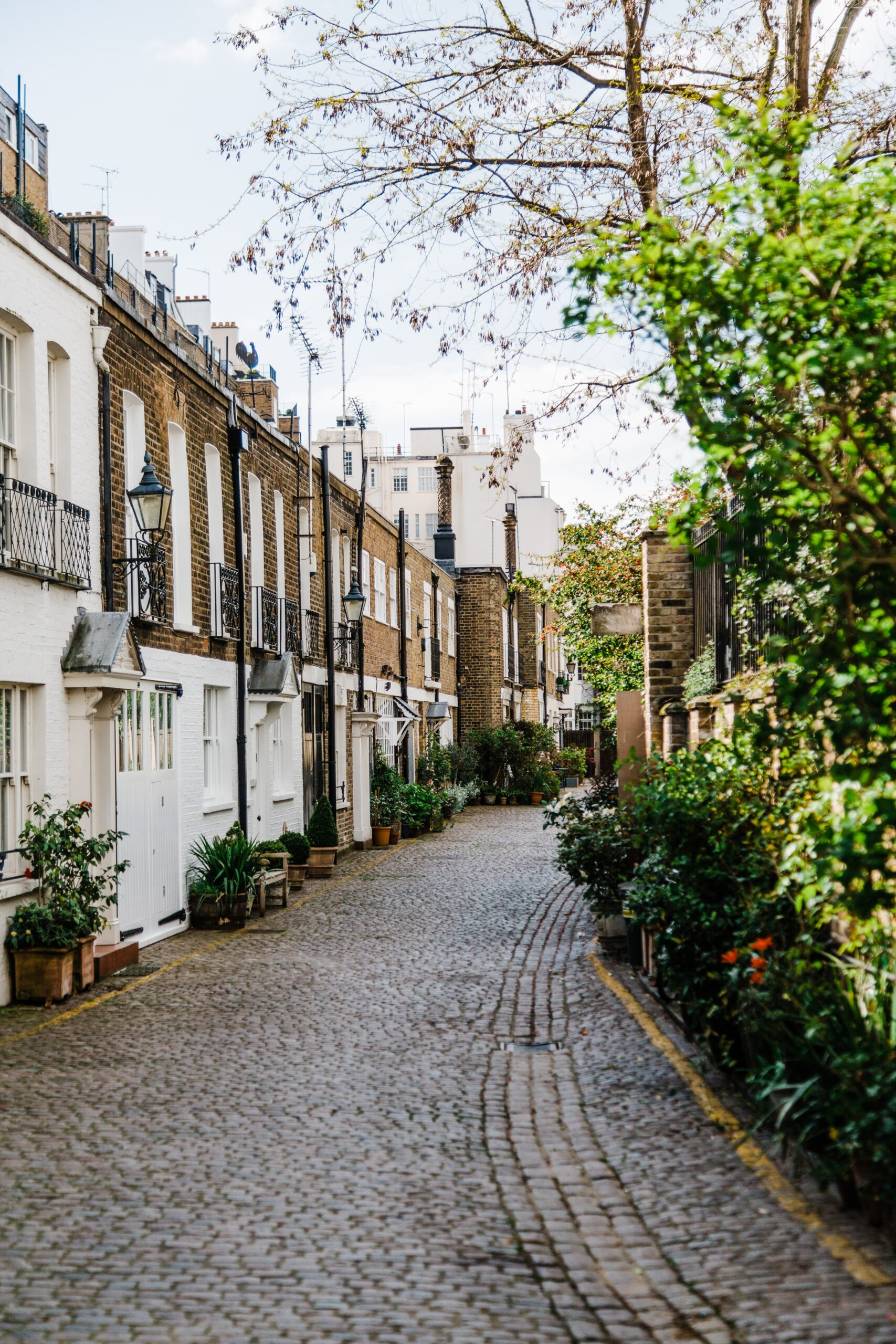 bruno-martins-row of townhomes cobbled brick path gardens on right side-unsplash