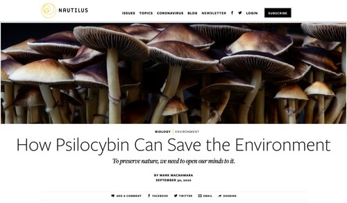 HOW PSILOCYBIN CAN SAVE THE ENVIRONMENT