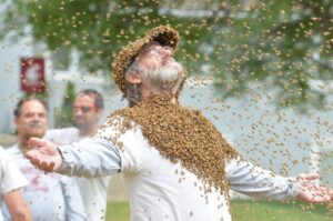 Paul Stamets covered with Bees