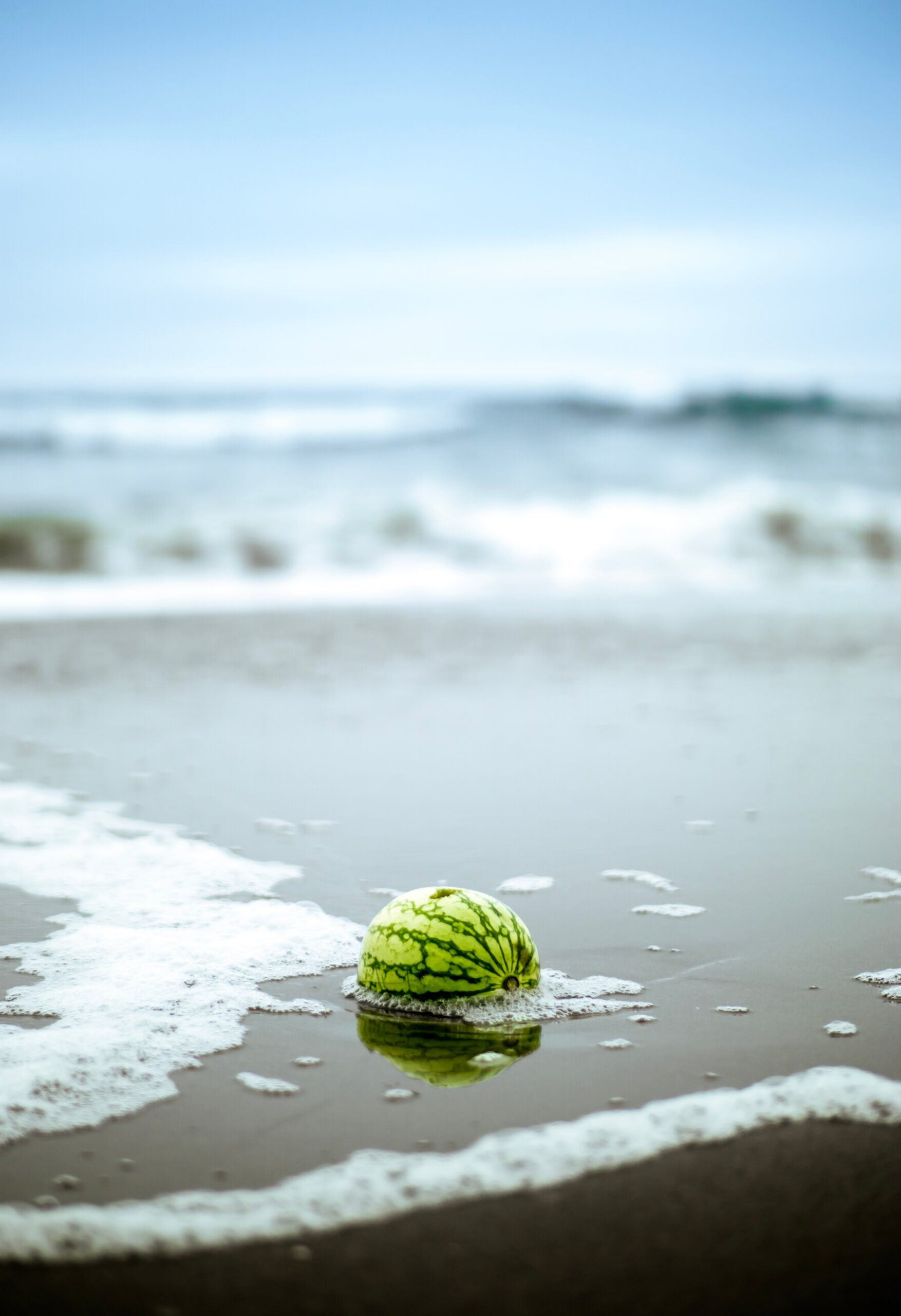Watermelon washing ashore on ocean beach by william bout on Unsplash