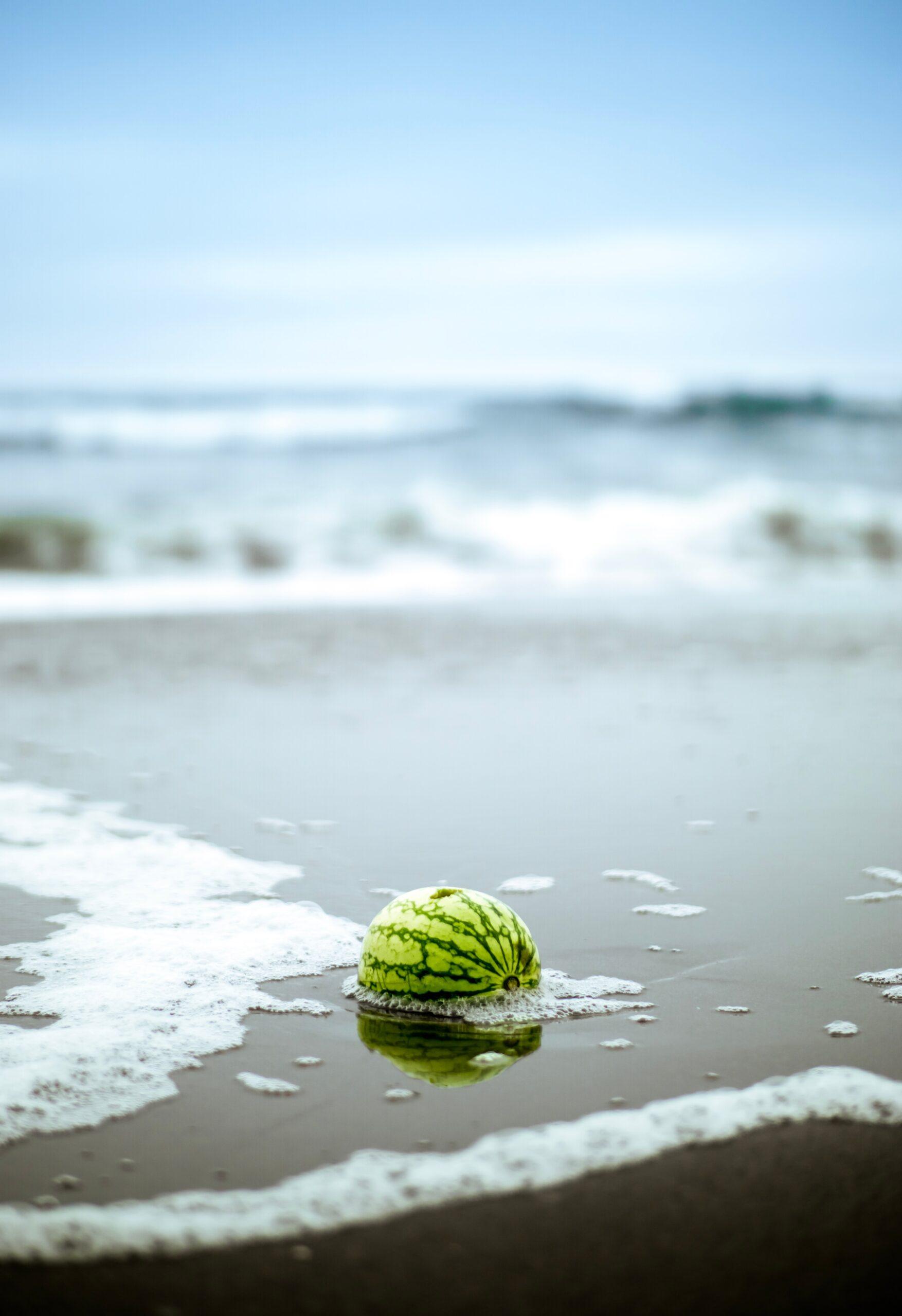 Watermelon washing ashore on ocean beach by william bout on Unsplash