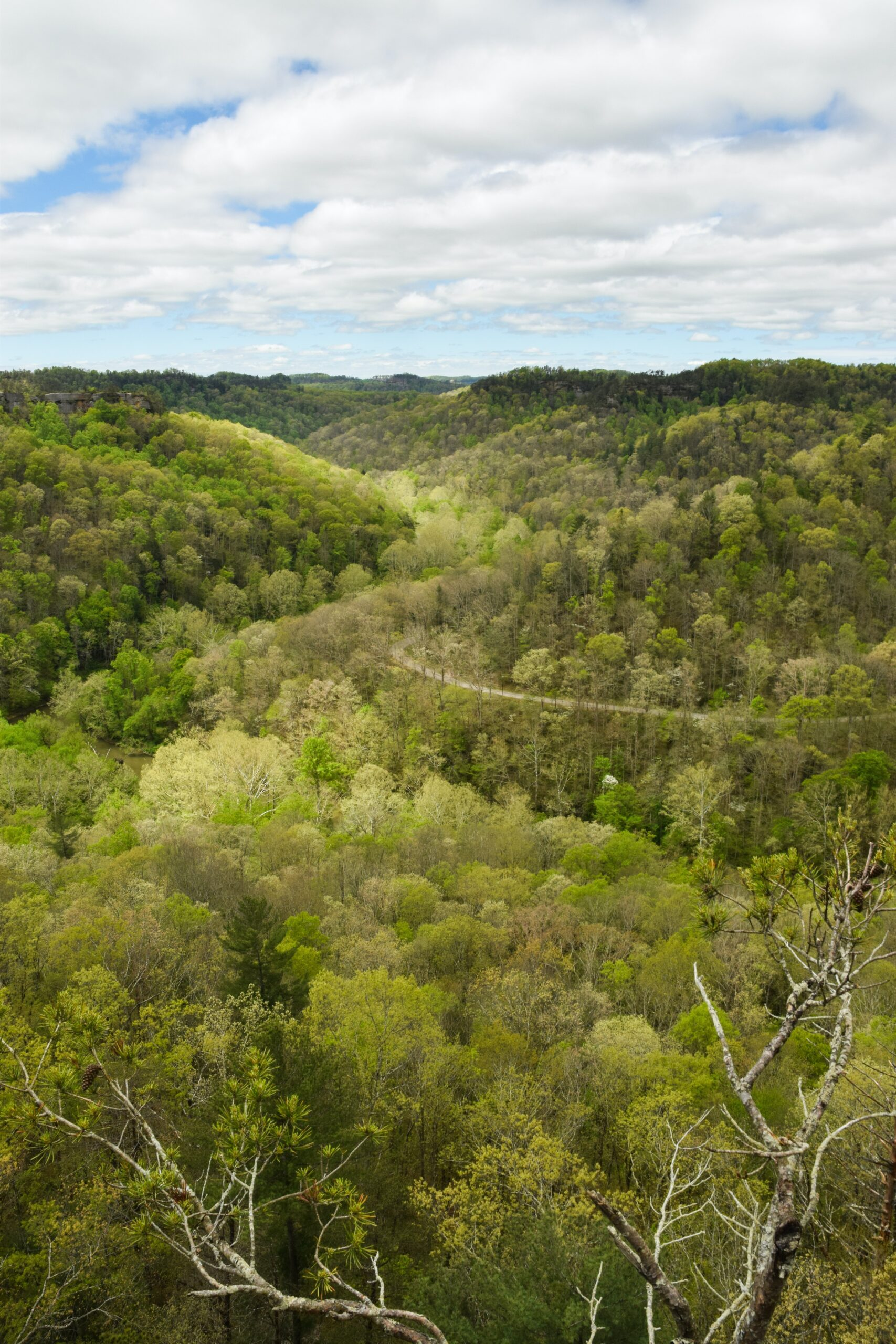 amy-baugess-Mountain valley with lush kentucky greenunsplash