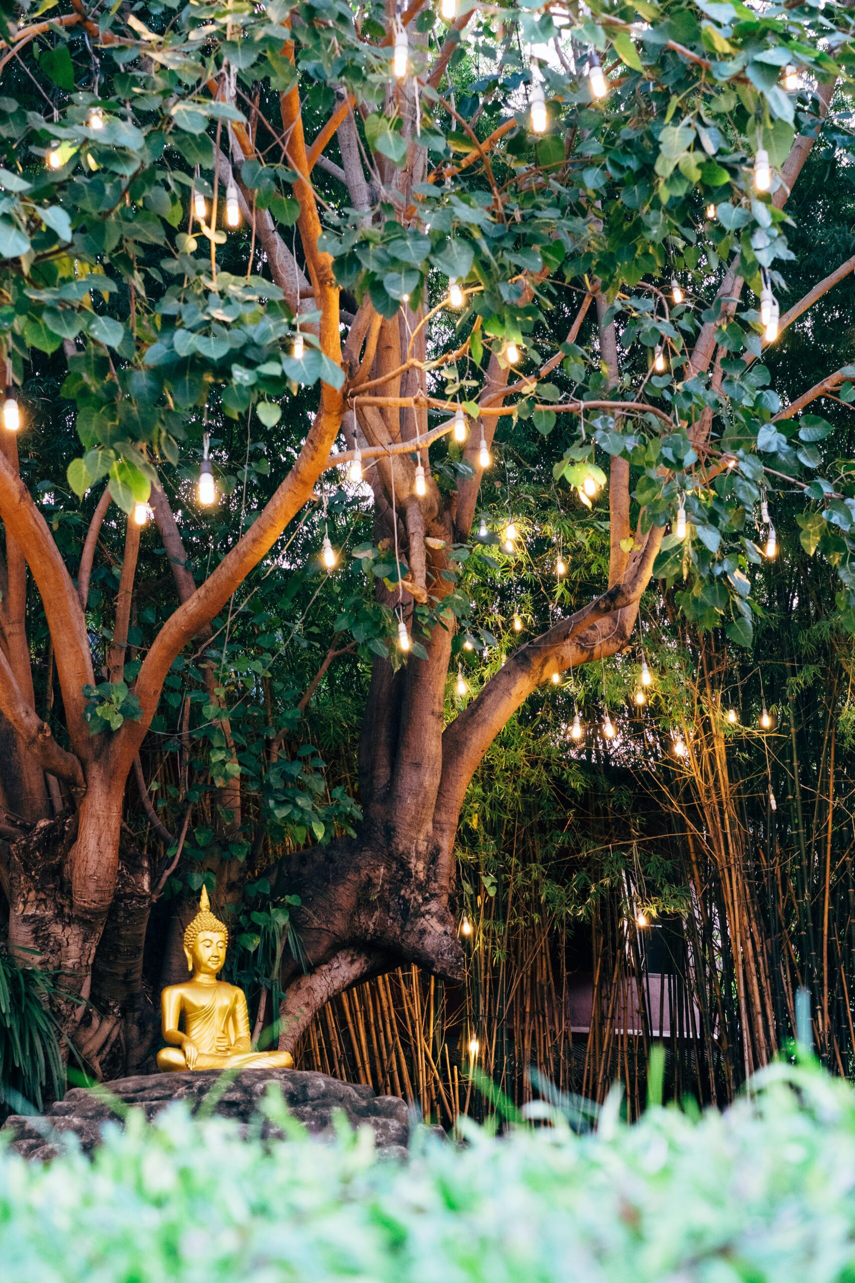 Buddha in Garden with Bamboo by Markus Winkler