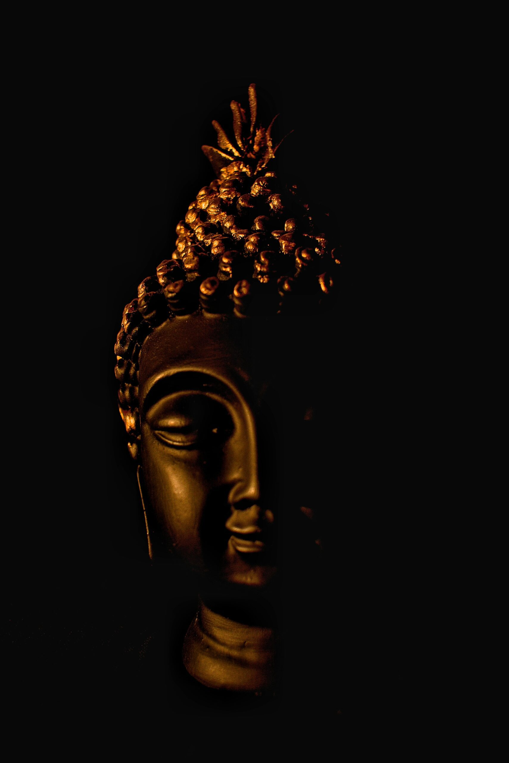 Buddha head with black background by Monil Andharia