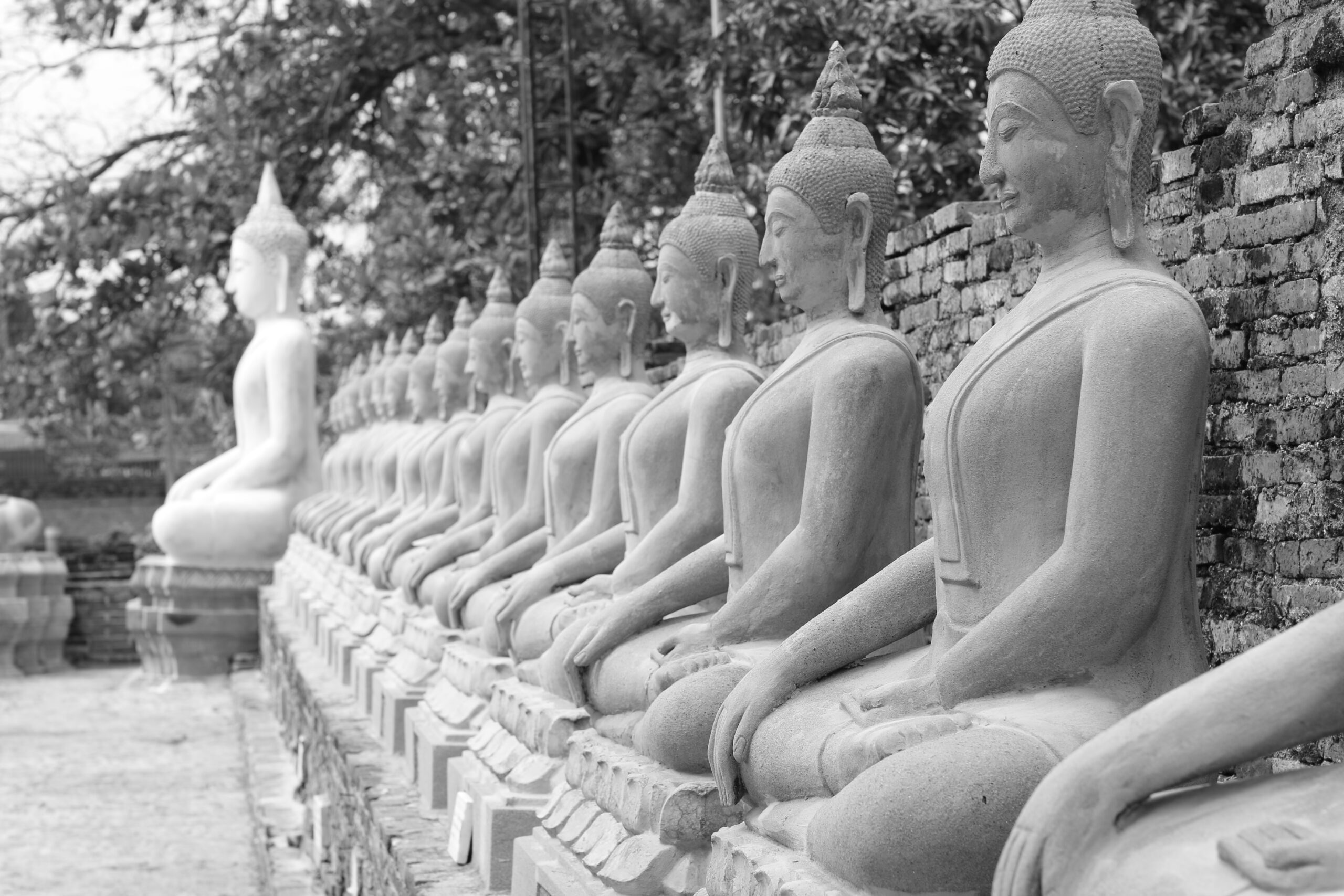 chris-man-Buddha statues in a row-unsplash