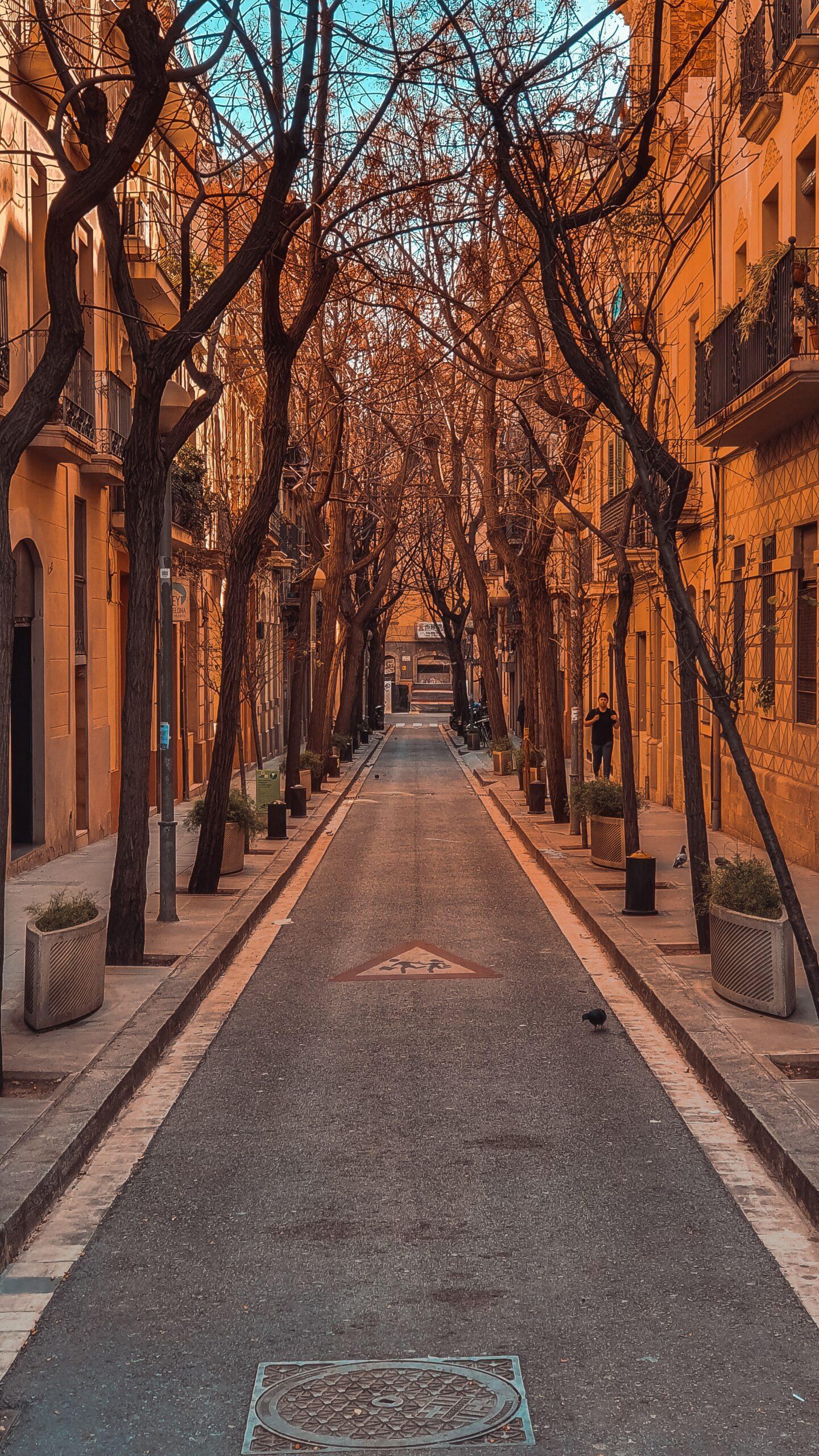 miltiadis-fragkidis-Barcelona City narrow tree lined avenue-unsplash
