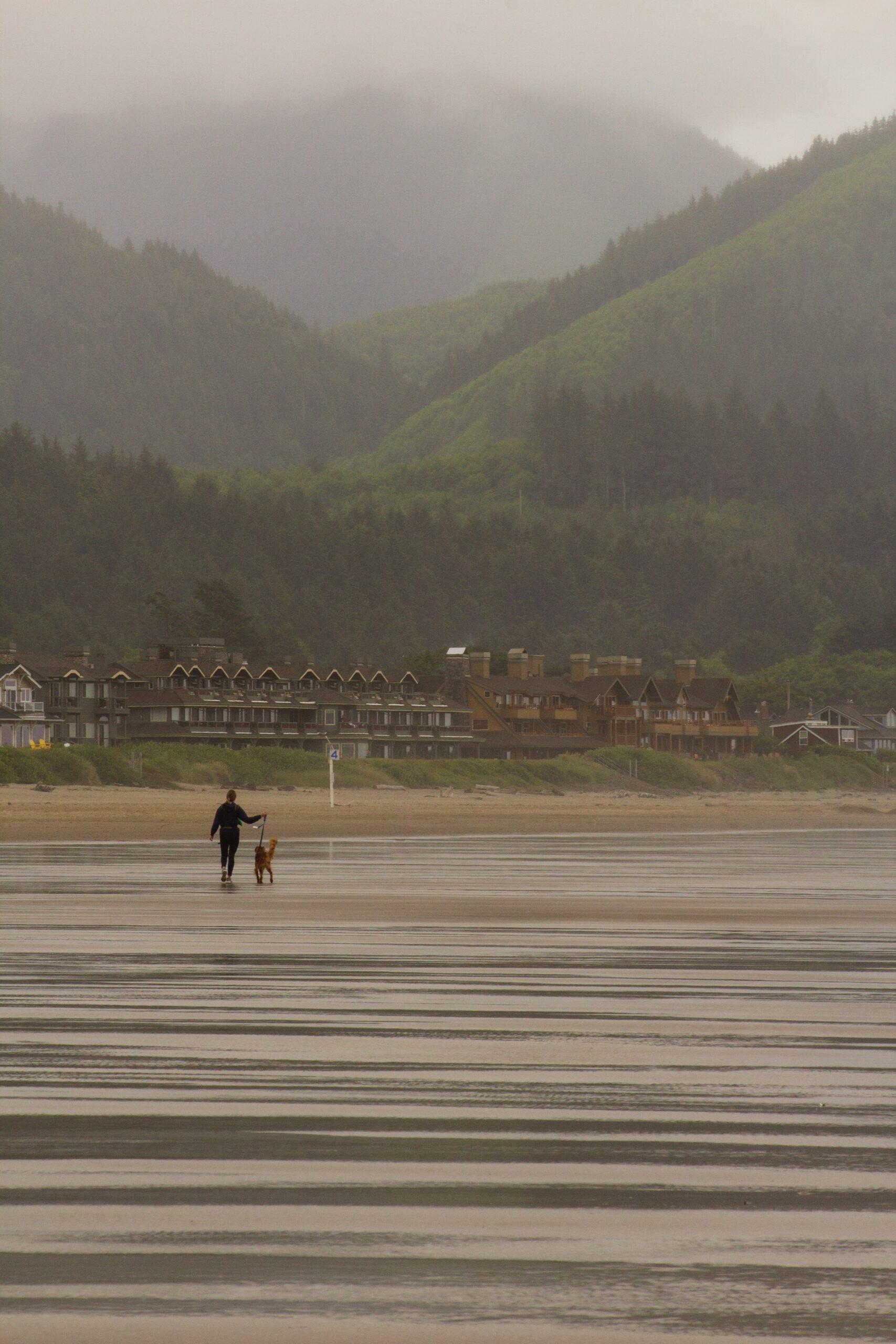 ryan-stone-seaside dog walker am walk in fog-unsplash