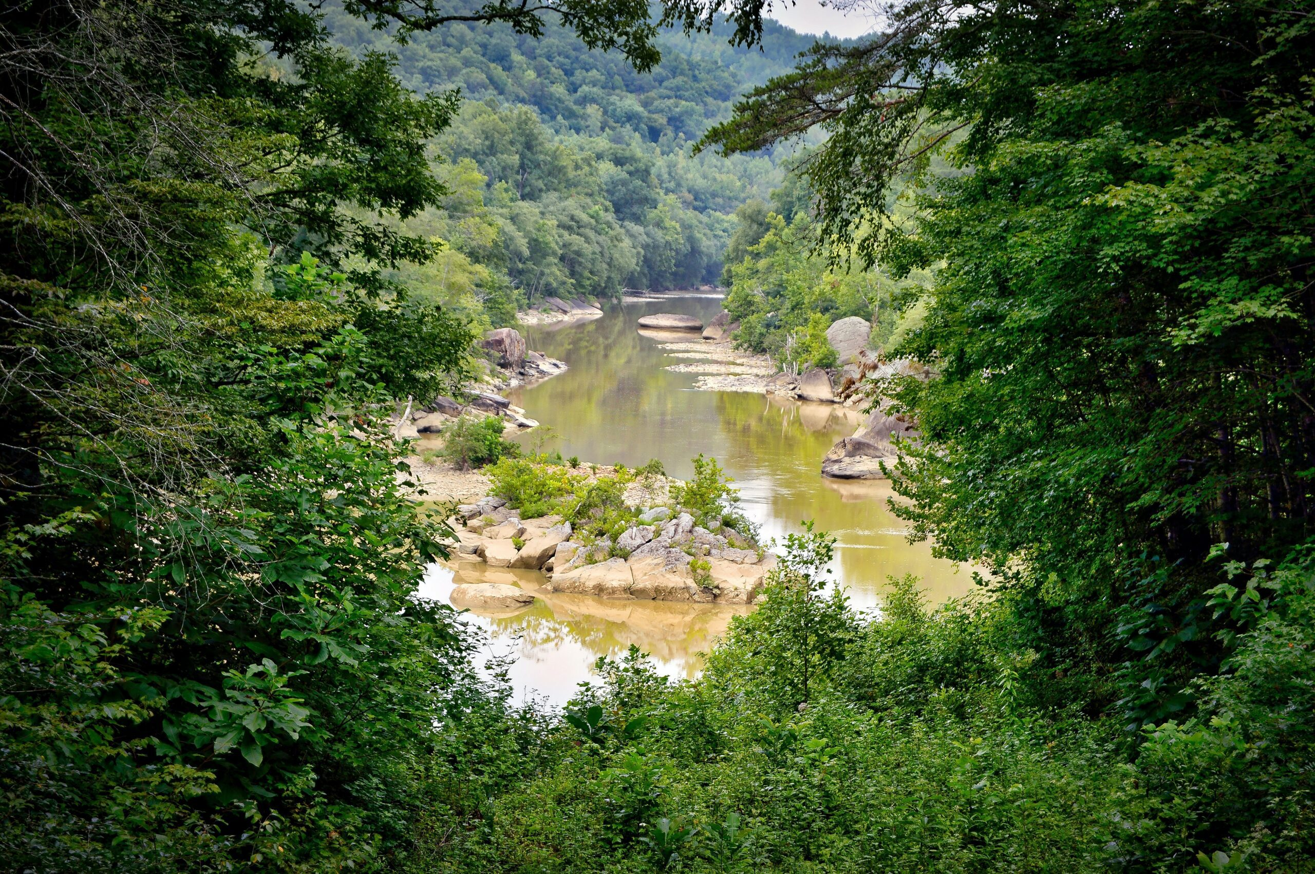 william-phipps-Kentucky creek-unsplash